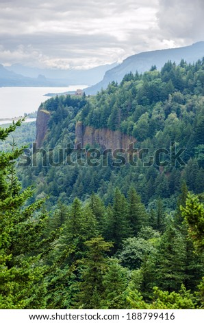 Forest and cliffs in the Columbia River Gorge in Oregon - stock photo
