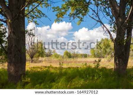 forest and sky with clouds, nature frame background - stock photo