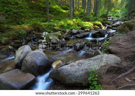 Forest and stream between big stones. Sunlight on green grass and moss. Carpathian landscape in summer season - stock photo