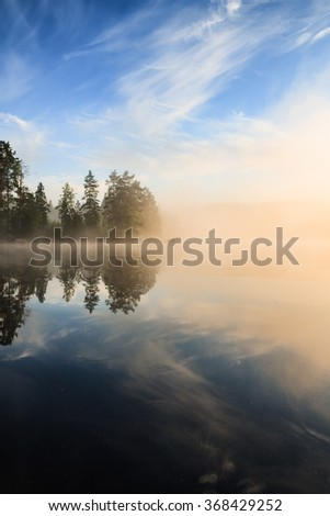 Forest at lakeside at foggy morning - stock photo