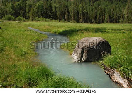 Forest brook, stone - symbol of fairy tale, Altai, Russia - stock photo