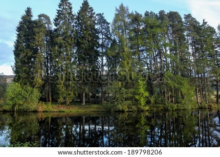 Forest, by Loch Ness / Loch Ness is Scotland's most famous lake. - stock photo