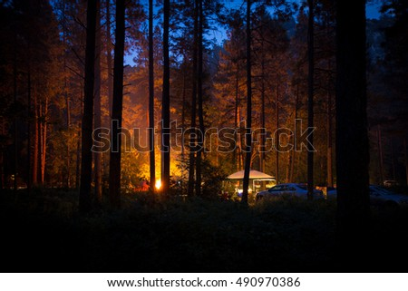 Forest Camping by Firelight