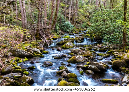 Forest creek. Water cascades over moss covered rocks in Great Smoky Mountains National Park, Tennessee, USA