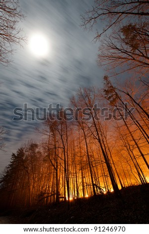 Forest Fire Under Full Moon - stock photo