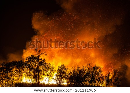 Forest fires caused by the burning of weeds Thailand. - stock photo