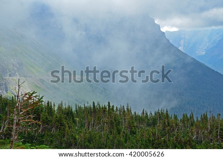 Forest, fog, and mountains in Glacier National Park. - stock photo