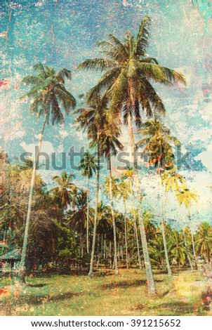 Forest Group Tropical Palm Trees Jungle Toned Vintage Shabby Effect Nature Landscape Background Holiday Travel Design View