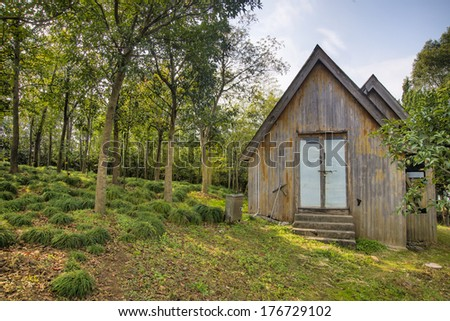 Forest huts - stock photo