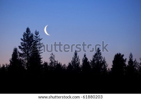 forest in silhouette with crescent moon - stock photo