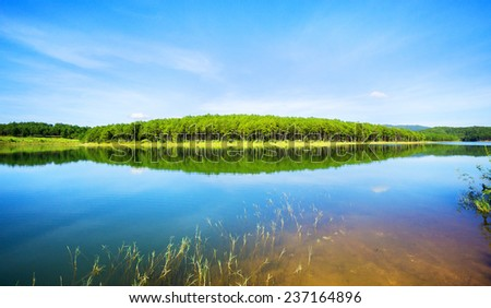 Forest lake under blue cloudy sky. Tuyen Lam lake, Da lat, Vietnam.Da lat is one of the best tourism city in Vietnam. Dalat city is Vietnam's largest vegetable and flowers growing areas. - stock photo