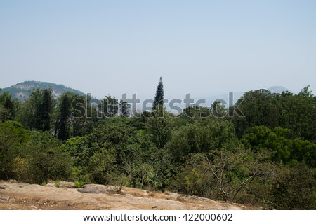 forest landscape at nandi hills, india view point in a foggy day  - stock photo