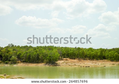 forest landscape in thailand - stock photo