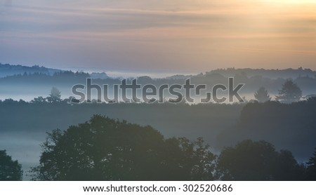 Forest landscape with layers of fog at sunrise in countryside