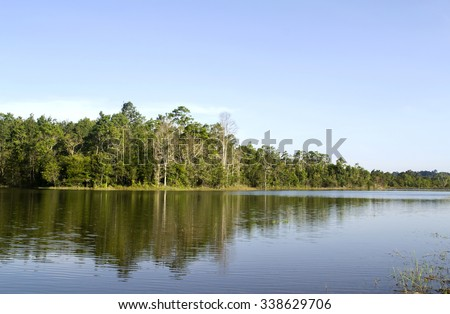 Forest landscape with reflection in a lake on blue sky background