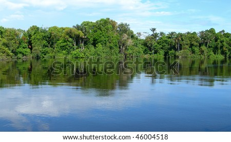 Forest mirrored in a lagoon on Rio Negro in the Amazon River basin, Brazil, South America - stock photo
