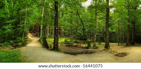 Forest panorama with a wooden bridge - stock photo