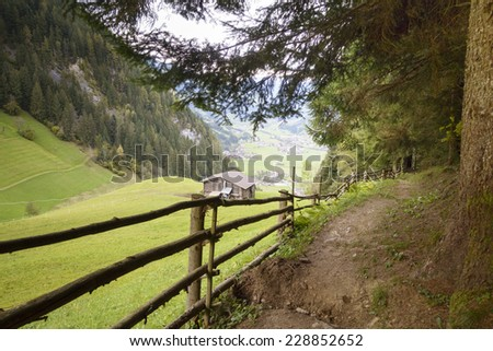 Forest path with views of the Zillertal - stock photo