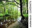 forest river scene - stock photo