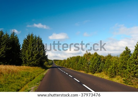 forest road to nowhere - stock photo