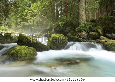 Forest stream flowing from the mountains. - stock photo