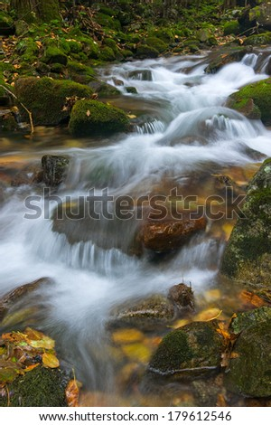 Forest stream running over mossy boulders. - stock photo