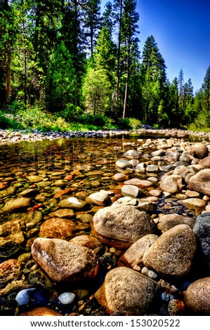 forest stream yosemite park - stock photo