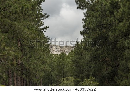 Forest View of Mount Rushmore