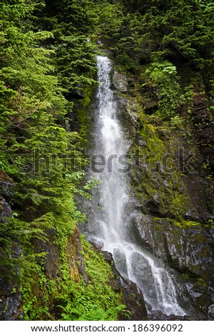 Forest Waterfall. A beautiful waterfall seen on the Heliotrope Ridge Trail in the Mt. Baker National Forest in western Washington State, USA. - stock photo
