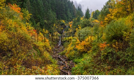 Forest Waterfall. Autumn colors are abundant in this scenic location near Diablo Lake, Washington state - stock photo
