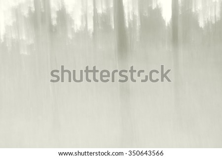 forest with heavy fog, blurred background