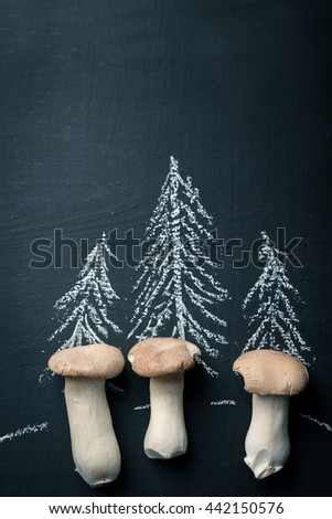 Forest with mushrooms - stock photo