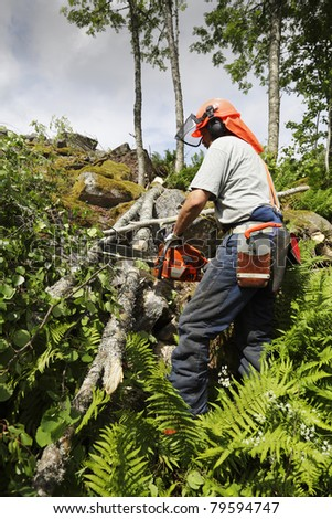 forest-worker, lumberjack at work - stock photo