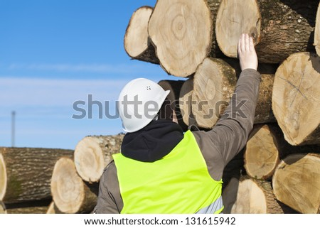 Forester near logs off the pile - stock photo