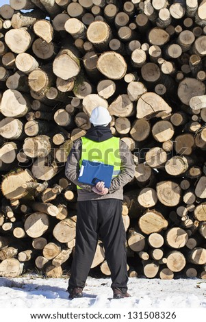 Forester with folder an opposite logs off the pile - stock photo