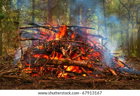 Forestry Bonfire - stock photo