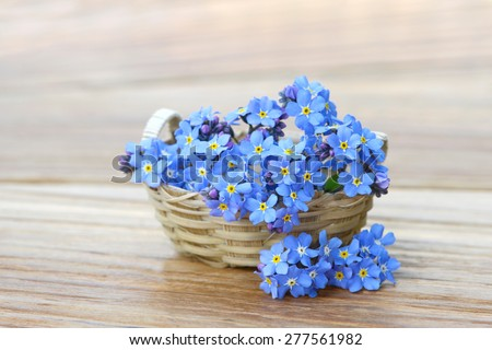 forget me not in the basket on wood - stock photo