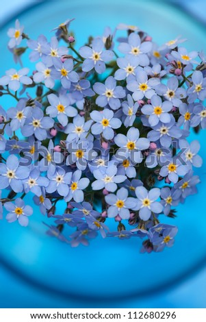 Forget-me-nots  posy in a blue vase