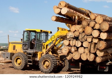 Forklift unloads logs - stock photo