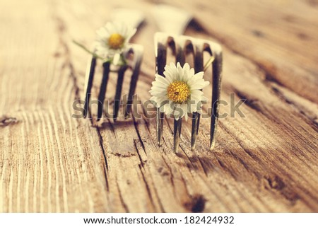 forks and two white flowers  - stock photo