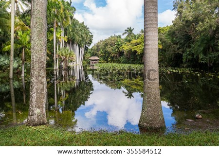 FORT LAUDERDALE, USA - DEC 6, 2015: Bonnet House slough in gardens of museum estate in Fort Lauderdale, Florida - stock photo