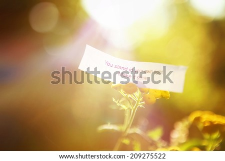 Fortune message, you stand in your own light. Make it shine.  Instagram effect - stock photo