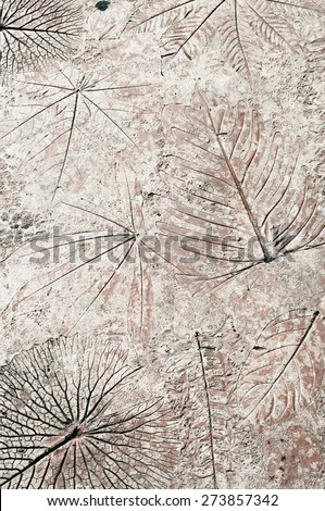 Fossil, imprints of leaves on stone - stock photo