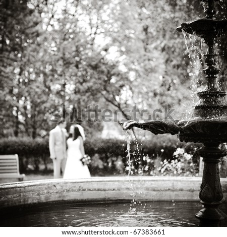 fountain with a spray of water in the foreground, the newlyweds are blurred in the background