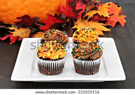 Four cupcakes decorated for fall in an autumn setting.  Orange and chocolate frosted chocolate cupcakes. - stock photo