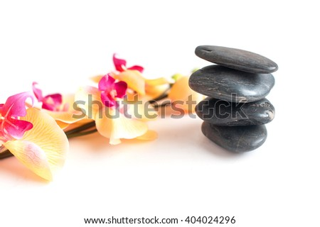 four dark gray stone and bright Orchid branch isolated on white background - stock photo