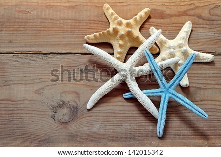 Four different starfish on driftwood - stock photo