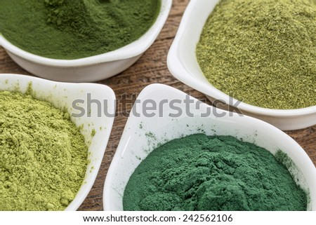 four healthy green dietary supplement powders (spirulina, chlorella, wheatgrass and moringa leaf) in white bowls - stock photo