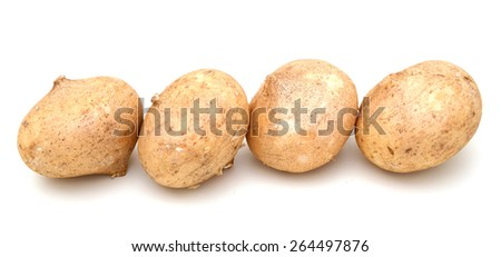 four jicamas roll up on white background