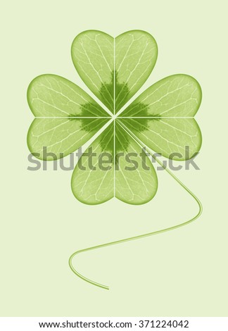 Four-leaf clover. The symbol of wealth, success and love. Happy plant. Geometric leaf green on a green background.